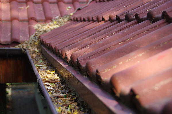 Keep Your Roof in Good Repair