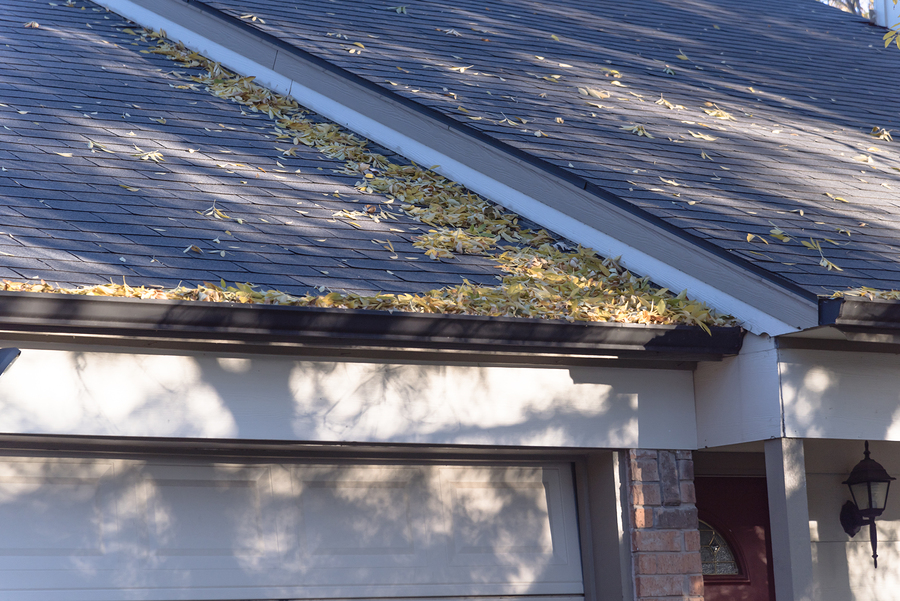 Why Should You Care About Roof Maintenance