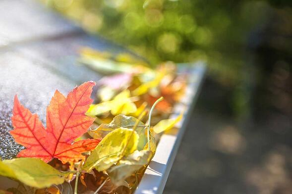 fall-home-maintenance-tips.jpg