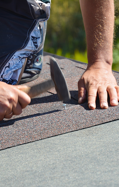 Schedule Your Roof Maintenance with First Quality Roofing & Insulation Today