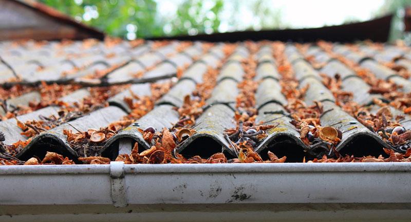 roof_maintenance_roof_lifespan