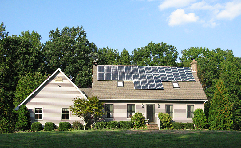 Learn Whether to Trim or Remove Trees for Solar Panels